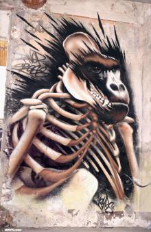 Graffiti street art marseille gorille noyps 2016 france